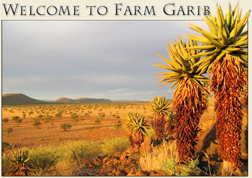 Welcome to Farm Garib